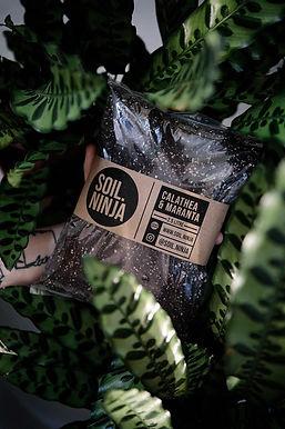 Calathea & Maranta Soil Mix 5 Litre