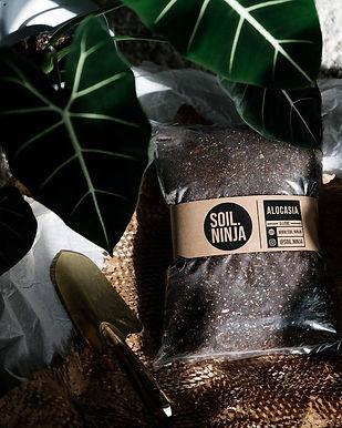 Alocasia Soil Mix 5 Litre