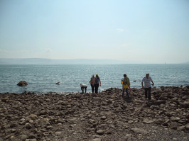 Picasa - Mar da Galileia