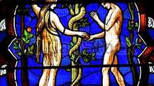 Matrimônio, Fruto da História da Salvação (Parte I)
