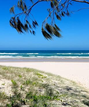 salt-beach-paradise-featured-link_91ebcf