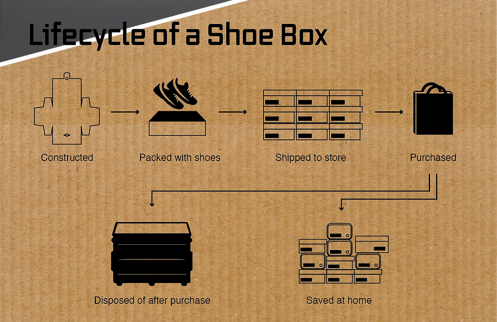 Lifecycle of a Shoe Box.png
