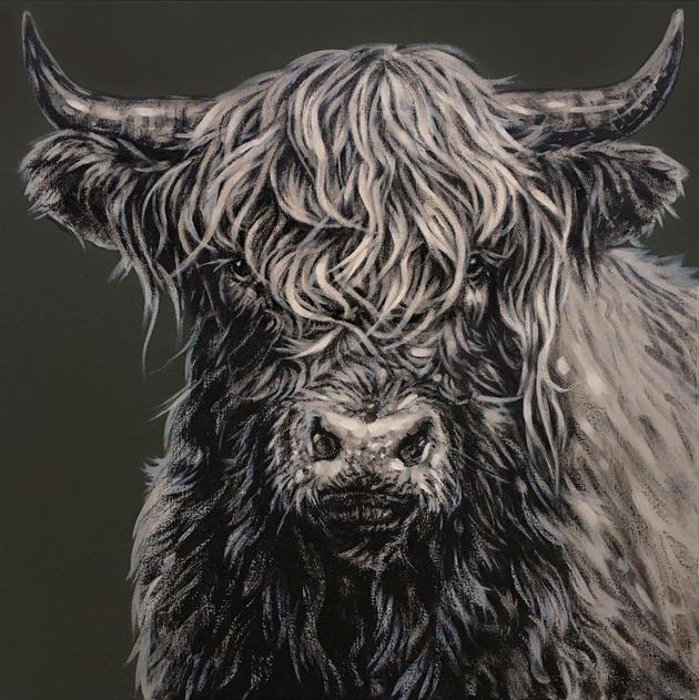 Highland Bull on Sage Green - SOLD