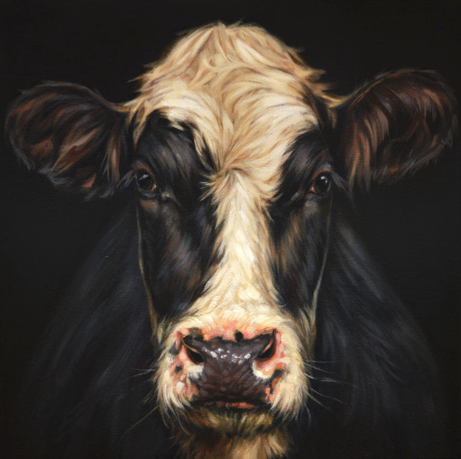 Face On Friesian - SOLD