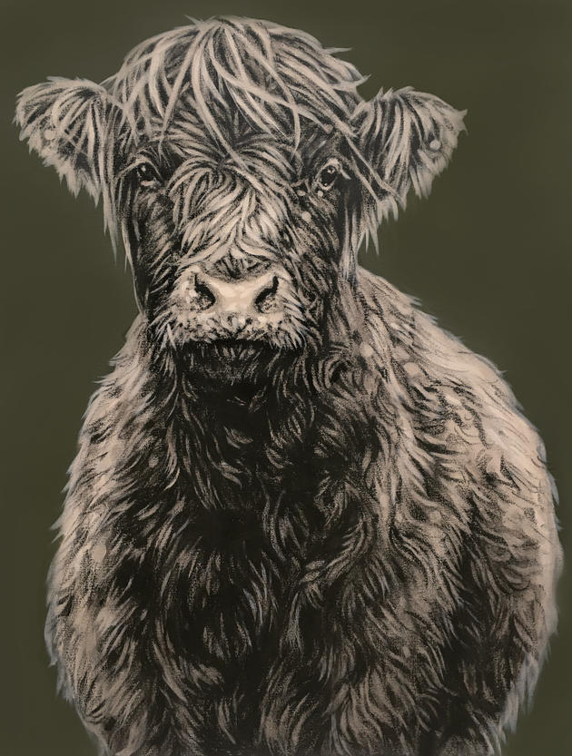 Young Highland on Green - £950