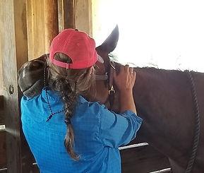 Kari:Horse.jpg