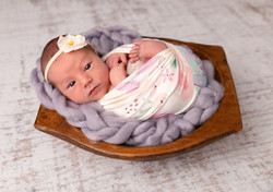frisco newborn photo
