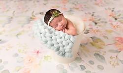 frisco newborn photography