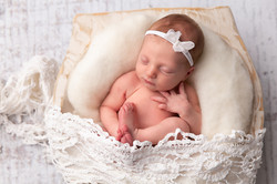 neutral newborn photo