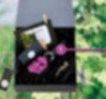 Wijntuinen_uitleg hor_001.jpg