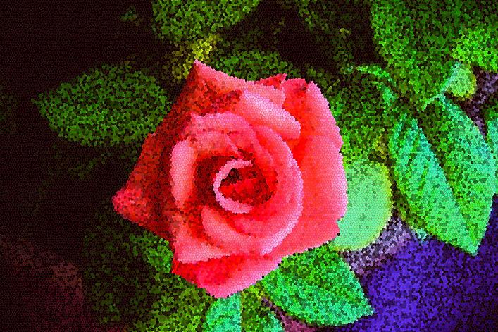roses2s.jpg