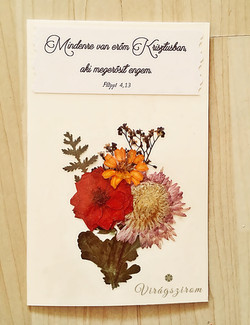 Virágszirom préselt virág képeslap