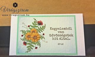 Cikkszám: VSZNY_IKa-14