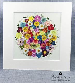 Préselt virág nyomat - falikép