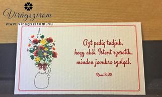 Cikkszám: VSZNY_IKa-4