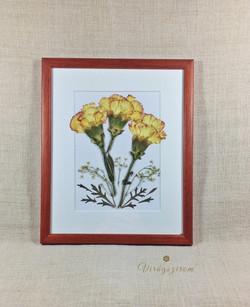 Virágszirom falikép préselt szegfűk