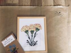 Virágszirom préselt virág csomag