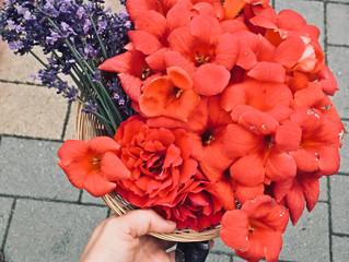 Szüreti dömping a Virágsziromnál