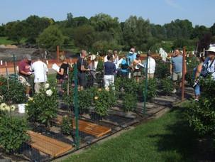 2016 Trial Garden Planting