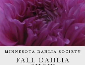 2018 Fall Dahlia Show Information