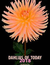 Dahlias of Today 2018