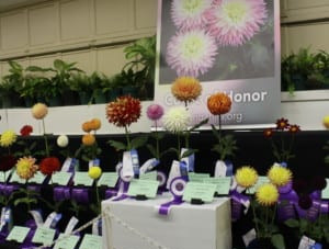 2019 State Fair COH & Bloom Count
