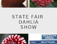 2018 State Fair Show Information