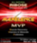 Maxelence MVP 12 Pack Box front Cherry