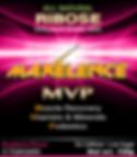 Maxelence MVP 12 Pack Box front Raspberry