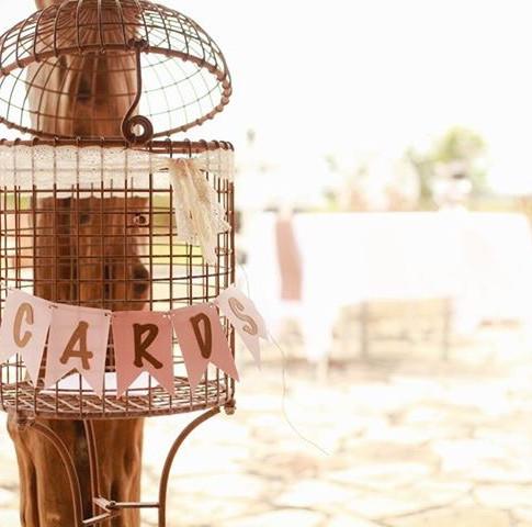 Standing Bird Cage