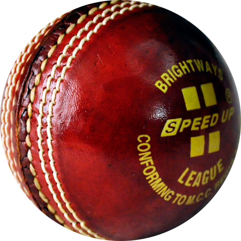 1351 LEATHER CRICKET SEASON BALL PIC