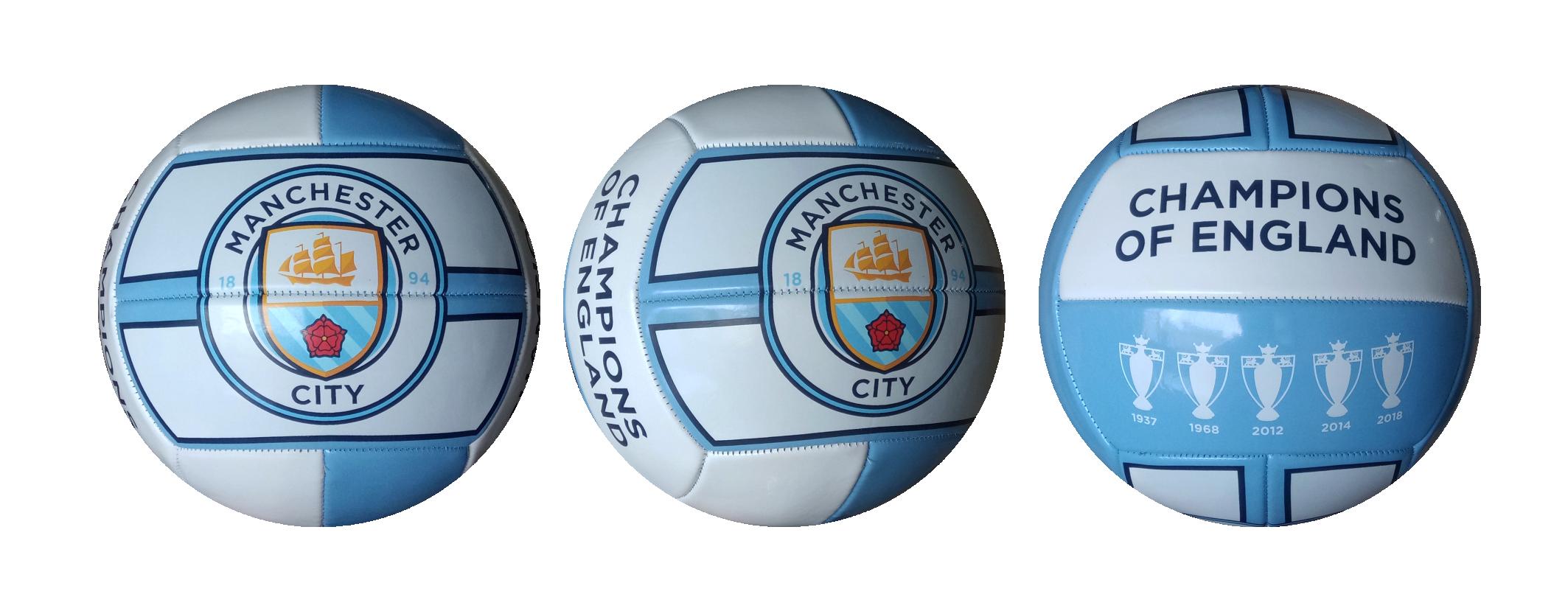 MANCHESTER CITY FOOTBALL 12 PANEL