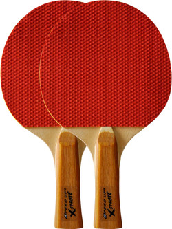 3011-D 2PPCS table tennis bats