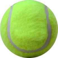 2996 CHHOTA BHEEM WOODEN CRICKET TENNIS BALL