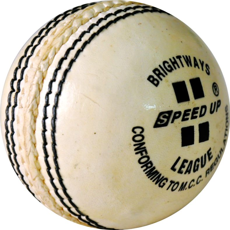 2683 LEATHER CRICKET SEASON BALL WHITE PIC
