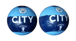 MANCHESTER CITY FOOTBALL 30 PANEL