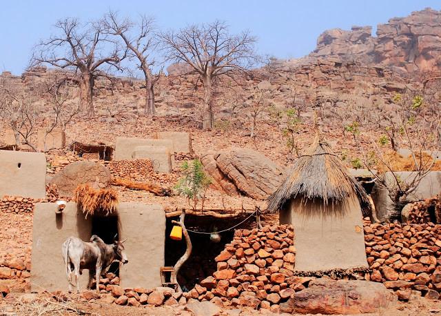 A Six Day Trek across the Bandiagara Escarpment. Dogon Country, Mali  (West Africa)