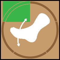 Foot Flexes Counter