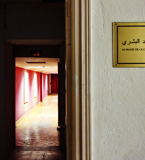 The Museum of Human-Hunting / Tunis