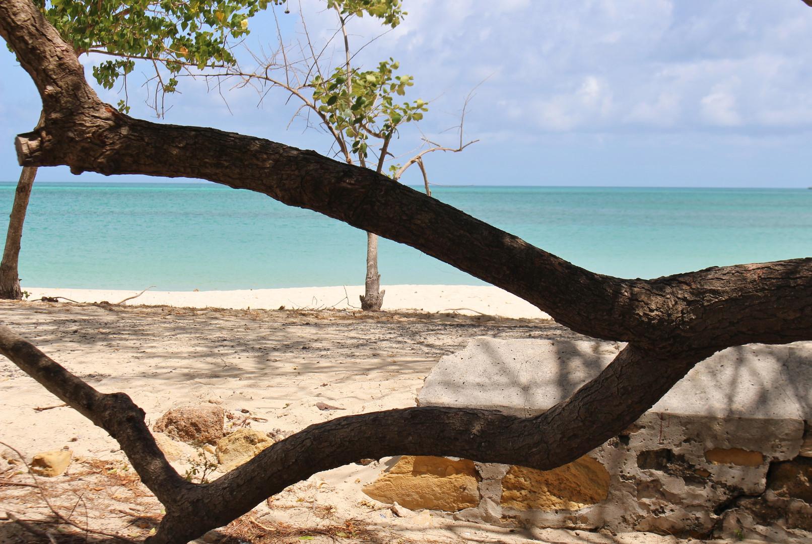 Antigua - Beach