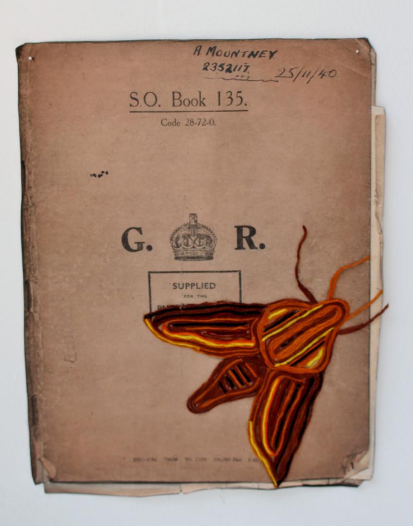 Moth 135