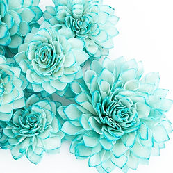 teal%20flowers_edited.jpg