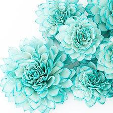 teal flowers.jpg