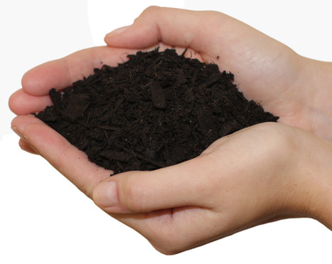 Natures Perfect Mulch ®