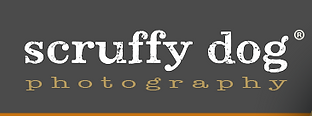 logo_1376414591_edited.png