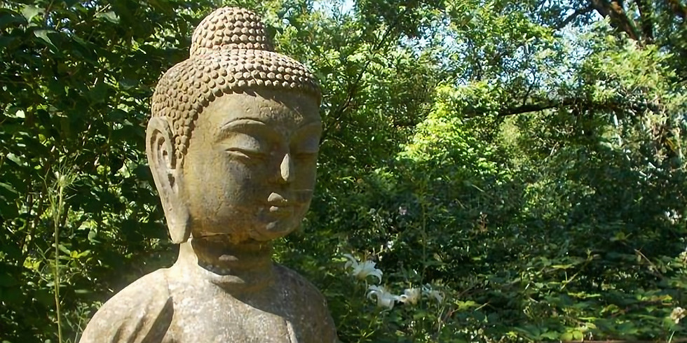 Yoga & Meditation Intensive Module V | Science of the Soul