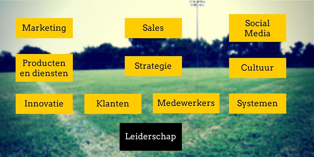 De 11 succesfactoren