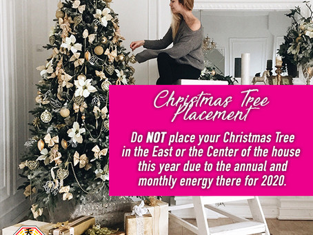 Christmas Tree Placement!