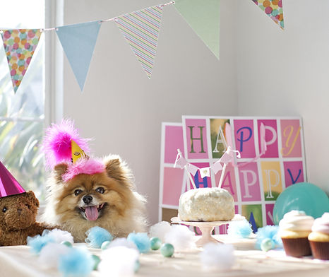 NDD Ways to Celebrate