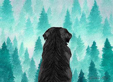 black dog among the treesWEB.jpg